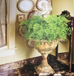 old urns....French Laundry: The French Inspired Home
