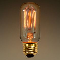 25 Watt - Vintage Antique Light Bulb - T12. $2.49  Use in camera to lamp craft