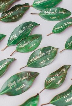 wedding calligraphy magnolia leaf place cards / http://www.himisspuff.com/creative-seating-cards-and-displays/11/