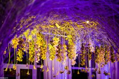 Hanging flower decor with ceiling covered with branches. Purple and green light. Pastel Purple, Pastel Colors, Winter's Tale, Prague, Flower Decorations, Soho, Branches, Flower Art, Fair Grounds