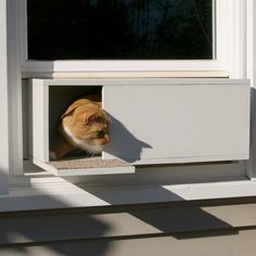 The Easy Mount Window Cat Door - Hammacher Schlemmer