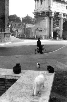 Roma 1959.  Foto: Henri Cartier-Bresson