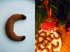 Gianduja and Chocolate Cookies