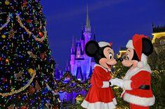Christmas in Disney...taking the girls!
