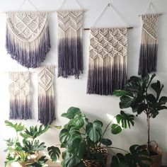 """144 Likes, 5 Comments - Bonnie 