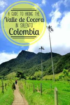 The Valle de Cocora hike in Salento, Colombia is famous for its 200 foot tall…