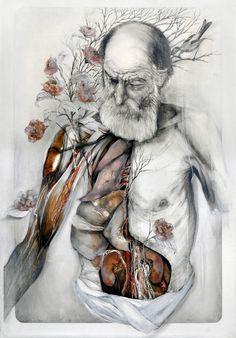 Esplendor dissecado: A visionária arte anatômica de Nunzio Paci                                                                                                                                                                                 Mais