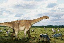 """Ilustração do dinossauro """"uberabatitan"""" (Uberabatitan ribeiroi) localizado em Uberaba, Minas Gerais."""