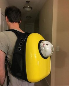 This Space Age Cat Backpack Lets Your Kitty Come With You Wherever You Go - Neatorama