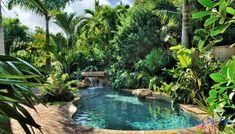 Một hồ bơi sinh thái luôn có hệ thống xử lý nước thông minh tạo cho người bơi cảm giác thoải mái, thư thái và sạch sẽ. Hồ bơi sinh thái không cần có mái che nhưng người bơi vẫn không ngại nắng và có thể bơi bất kỳ giờ nào trong ngày, dễ dàng thư giản cùng người thân bên làn nước mát dưới bóng râm hoặc dưới nắng nhẹ qua từng tán lá, ngắm nhìn đá cây hoa cỏ xa xa mới thấy hết được cái thú vị, bình yên của đất trời bao la. Swimming Pool Fountains, Swimming Pools Backyard, Swimming Pool Designs, Lap Pools, Indoor Pools, Landscaping Around Pool, Tropical Pool Landscaping, Landscaping Ideas, Plants Around Pool