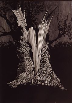 Barry Moser (b.1940). Photographic reproductions of wood engravings from ...    nlm.nih.gov