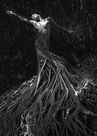 La photographie, c'est un art charmant et abominable. Earth Spirit, Dark Flowers, Divine Mother, Green Man, Archetypes, Abstract Photography, Light And Shadow, Fantasy Creatures, Tree Of Life