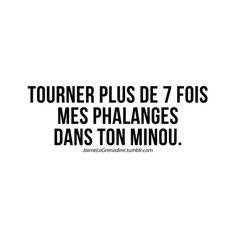 Tourner plus de 7 fois mes phalanges dans ton minou - #JaimeLaGrenadine #citation #punchline #quote #amour #love #coquin