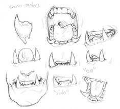 deerstroyer:i was thinking about orc teeth, - Drawing and Art Teeth Drawing, Anatomy Drawing, Anime Mouth Drawing, Drawing Techniques, Drawing Tips, Character Design References, Character Art, Animal Drawings, Art Drawings