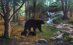 Early Morning Black Bears Mural - Michael Matherly| Murals Your Way