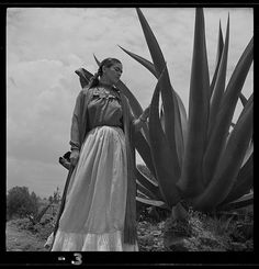 """TONI FRISSELL (NY, / Frida Kahlo (Senora Diego Rivera) standing next to an agave plant, during a photo shoot for Vogue magazine, """"Senoras of Mexico"""". Diego Rivera, Mike Todd, Art Vintage, Vintage Photos, Frida Kahlo Facts, Portraits Victoriens, Frida And Diego, Frida Art, Agave Plant"""