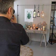 Behind The Scenes // Autumn 2016 Photoshoot #grahamandgreen #photoshoot #behindthescenes #newcollection #autumncollection #autumn #new #homedecor #interiordesign #furniture #lighting #home #decor