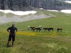 Explore Outside | Explore Zagori Hiking Trips, The Outsiders, Greece, Explore, Mountains, Travel, Animals, Beautiful, Greece Country