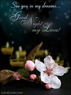 Good night my sweetest love. I miss you so much! You have been on my mind a lot, and I pray for you everyday. XOXOXO!