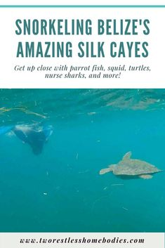 Snorkeling Belize's Silk Cayes | Two Restless Homebodies
