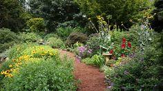 Bryce Lane's garden