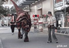 Raptor Cosplay GIF. So good.