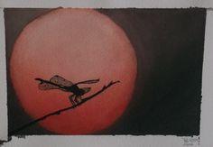 Libellule au crépuscule