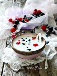 Armonia Paleo: Porridge Crudista di Cocco ai Frutti di Bosco