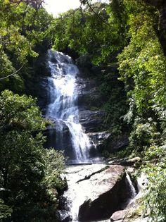 Parque Nacional da Tijuca in Rio de Janeiro, RJ