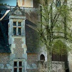 Étrange raccourcis  @chateaudumoulin  ouvert 7j7 de 10h à 12h30  et de 10h à  12h30  et de 14h à  18h30  A 30mn de Chambord et du Zooparc de Beauval  #coeurvaldeloire #centrevaldeloire #MagnifiqueFrance #OTvaldechersaintaignan #chateaudumoulin  www.chateau-moulin-fraise.com