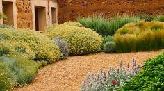 Jardin Toledo 2009: detalle plantación patio. Jardín mediterraneo, grava, jardín…