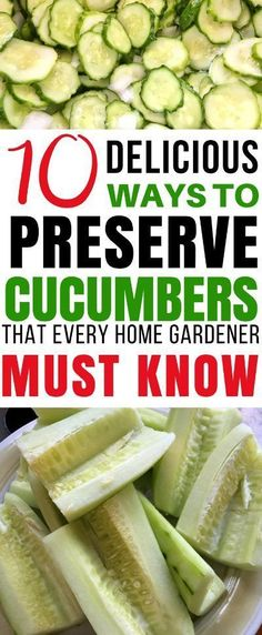 Shade Garden Flowers And Decor Ideas Do You Have Cucumbers Piling Up From The Garden? Here Are 10 Ways To Preserve Cucumbers That Will Let You Enjoy Their Crisp Goodness All Year Long Food Preservation Canning Preserve Cucumbers Cucumber Canning, Canning Pickles, Cucumber Recipes, Veggie Recipes, Healthy Recipes, Cucumber Ideas, Recipes For Cucumbers, Preserving Cucumbers, How To Store Cucumbers