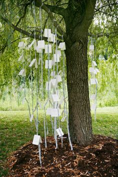 Be aware of your environment. Make use of the natural surroundings for your outdoor wedding. Rather than placing escort cards on a table, hang ribbons from a nearby willow tree so guests mingle as they pick up their cards. (Just be sure to remove the ribbons post-celebration!)