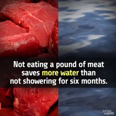 Not eating a pound of meat saves more water than not showering for six months…