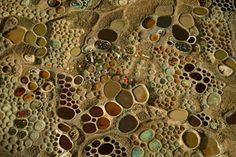 15Espectaculares fotos avista depájaro, Níger, África