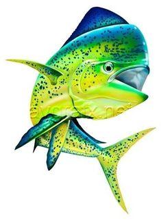 Original Mary Tracy illustration of a large jumping dolphin Mahi Fish, Mahi Mahi, Fish Fish, Sea Fish, Ocean Art, Ocean Life, Caran D'ache, Salt Water Fish, Fish Drawings
