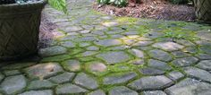 "Quikrete Walk Maker, a cobblestone mold for creating your own paths and patios. I finally live where I can grow moss without even trying. Going to basically ""pave"" the majority of the backyard creating a park like setting."
