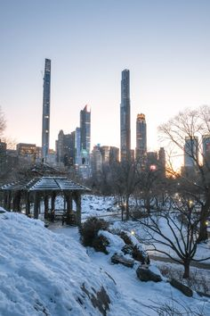 A treehouse for dreaming in winter snow wonderland Central Park Manhattan New York During sunset with city lights on apartment building condominium. Central Park Manhattan, Manhattan New York, New York Pictures, Treehouse, Condominium, Winter Snow, City Lights, Buy Frames, San Francisco Skyline