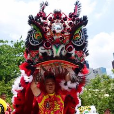 Chinese Lion Dance, Chinese Dragon, Lion Dragon, Dragon Head, Chinese Arts And Crafts, Chinese Element, Dragon Dance, People Dancing, Lion Art