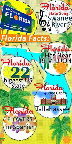 """FIVE FACTS ABOUT THE STATE OF FLORIDA: • The State Song of Florida is """"Swanee River""""  • Florida has over 22 million full time residents making it one of the largest populated states in the union. • The state of Florida is the 22nd largest state in the US • The capital of Florida is Tallahassee, the city is found in the northern part of the state is home to Florida State University. • Florida means """"Flower"""" in Spanish. It's an excellent name for such a tropical paradise."""