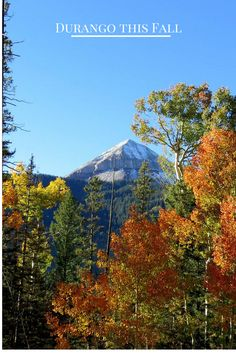 Experience beautiful Durango in the Fall! Check out our Blog!