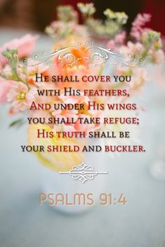 Image result for he will cover you with his feathers and under his wings you will find refuge