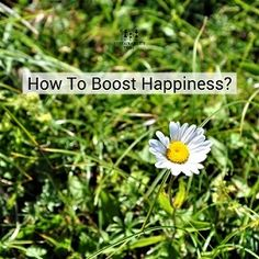 How to #boost #Happiness