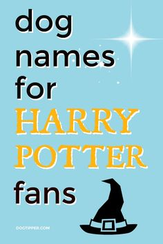 Potter Dog Names - Magical Names for Your New Dog Dog names for Harry Potter fans!Dog names for Harry Potter fans! Cute Dog Names Boy, Boy Dog Names Unique, Girl Pet Names, Pet Names For Dogs, Puppies Names Female, Black Dog Names, Female Dog Names, Best Dog Names Boys, Unique Names