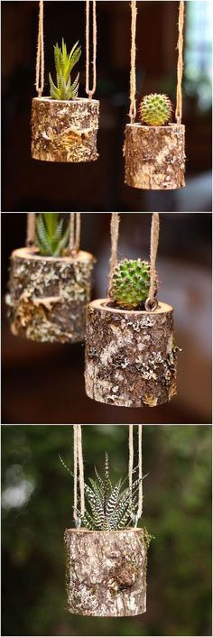 Plans of Woodworking Diy Projects - House Warming Gift Planter Hanging Planter Indoor Rustic Hanging Succulent Planter Log Planter Cactus Succulent Holder Gifts for Her Get A Lifetime Of Project Ideas & Inspiration! Hanging Succulents, Succulents Garden, Succulent Planters, Garden Planters, Succulent Arrangements, Indoor Succulents, Hanging Herbs, Succulent Ideas, Cactus Plants