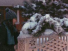 ❄⛄ #winter