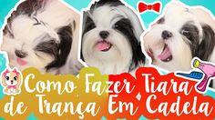 Penteado Pet: Tiara de Trança Para Cachorra Muito Fácil #VEDA10 ❥ Lói Cú...