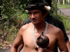 Amazonas Travel Expedition part I