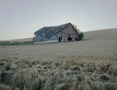 the abandoned barn Agra, Adam Parrish, John Rambo, Blue Sargent, Gillian Flynn, American Gothic, Southern Gothic, Red Dead Redemption, Dark Places