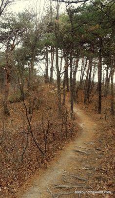 Sokcho - Corea del Sur - Anécdotas - Travel